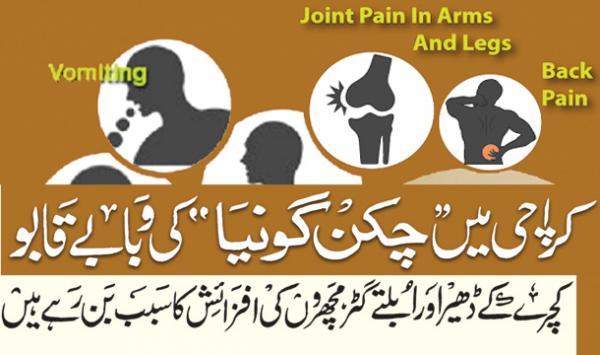 Karachi Main Chikungunya