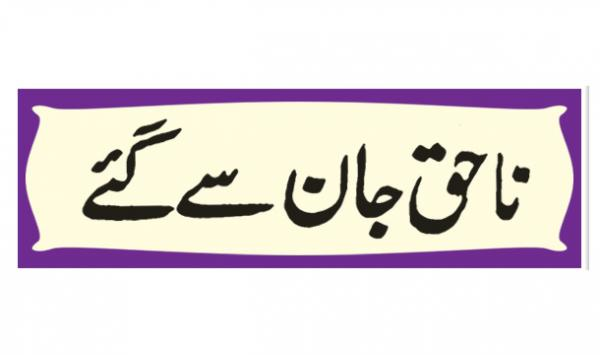 Na Haq Jan