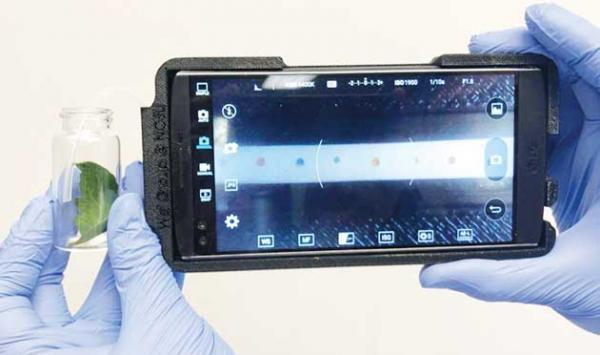 Smart Device For Diagnosing Diseases In Plants