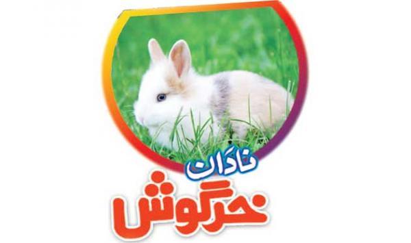 The Immature Rabbit